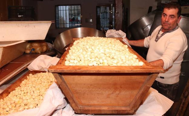 Un cofrade muestra los ajos que se utilizarán, ya pelados, el día de San Antón.