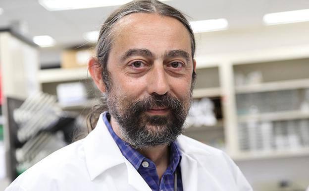 El investigador burgalés y catedrático de Medicina y Microbiología Adolfo García Sastre./UBU